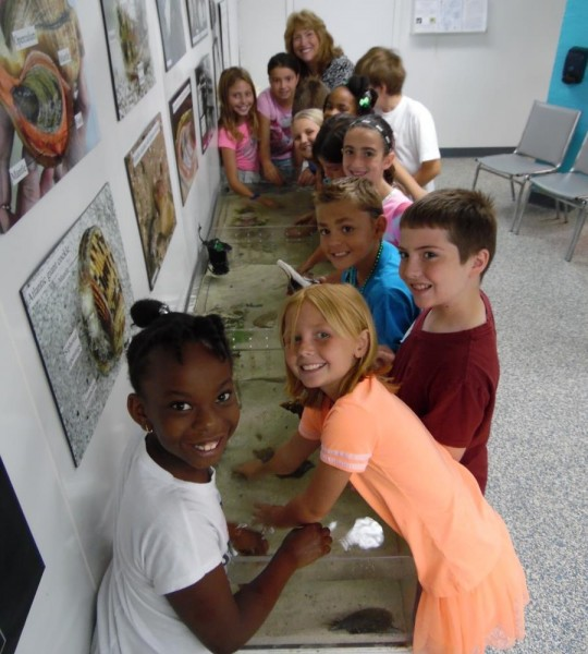 children around touch tank