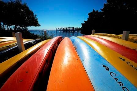 Sanibel-Island-Kayak